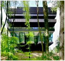 Rehabilitation Centre Groot Klimmendaal Arnhem - Featured Image