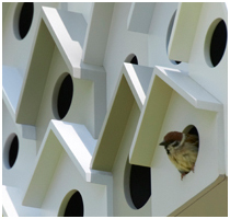Bird Apartment by Nendo - Featured Image
